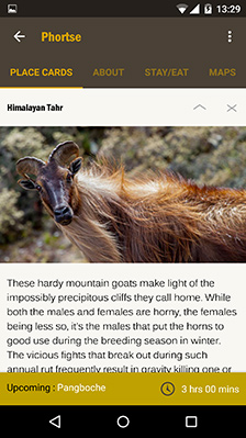 HoneyGuide Apps Placecards Himalaya Tahr Everest Trek